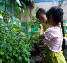 Chine : vivre avec la pollution
