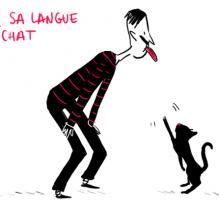 Les expressions françaises : série mixte